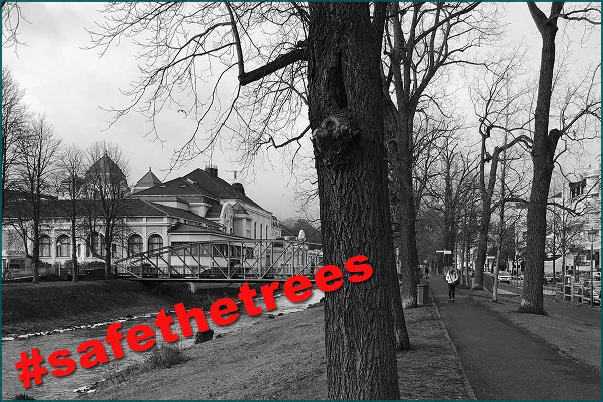 Zeitreise Ahrtal #safethetrees Ahrallee Casinobruecke 2019